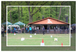 Rally Obedience am 01.05.2015