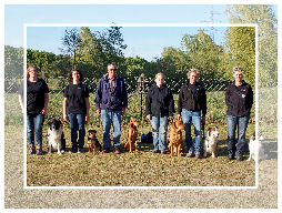 Rally Obedience in Arheilgen